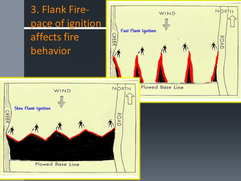 3. Flank Fire- pace of ignition affects fire behavior