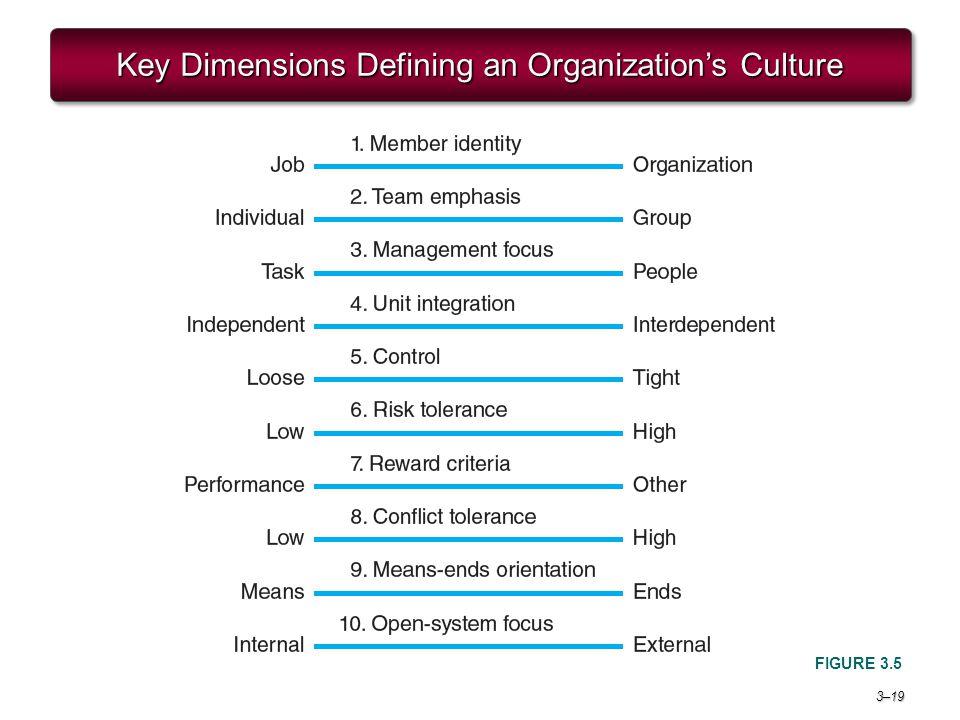 3–19 Key Dimensions Defining an Organization's Culture FIGURE 3.5