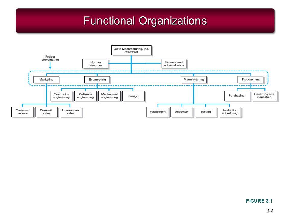 3–53–5 Functional Organizations FIGURE 3.1