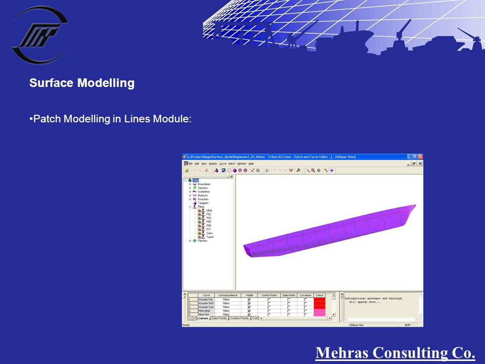 Patch Modelling in Lines Module: Surface Modelling Mehras Consulting Co.