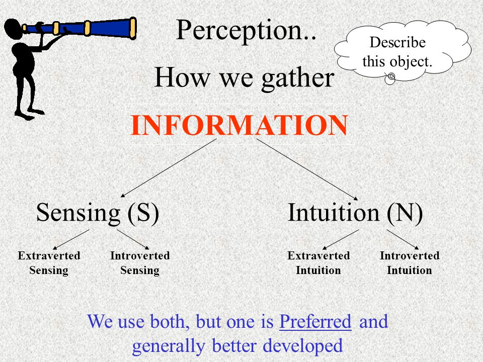 How we gather INFORMATION Perception..