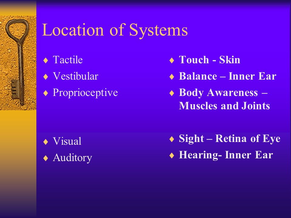 Location of Systems  Tactile  Vestibular  Proprioceptive  Visual  Auditory  Touch - Skin  Balance – Inner Ear  Body Awareness – Muscles and Jo
