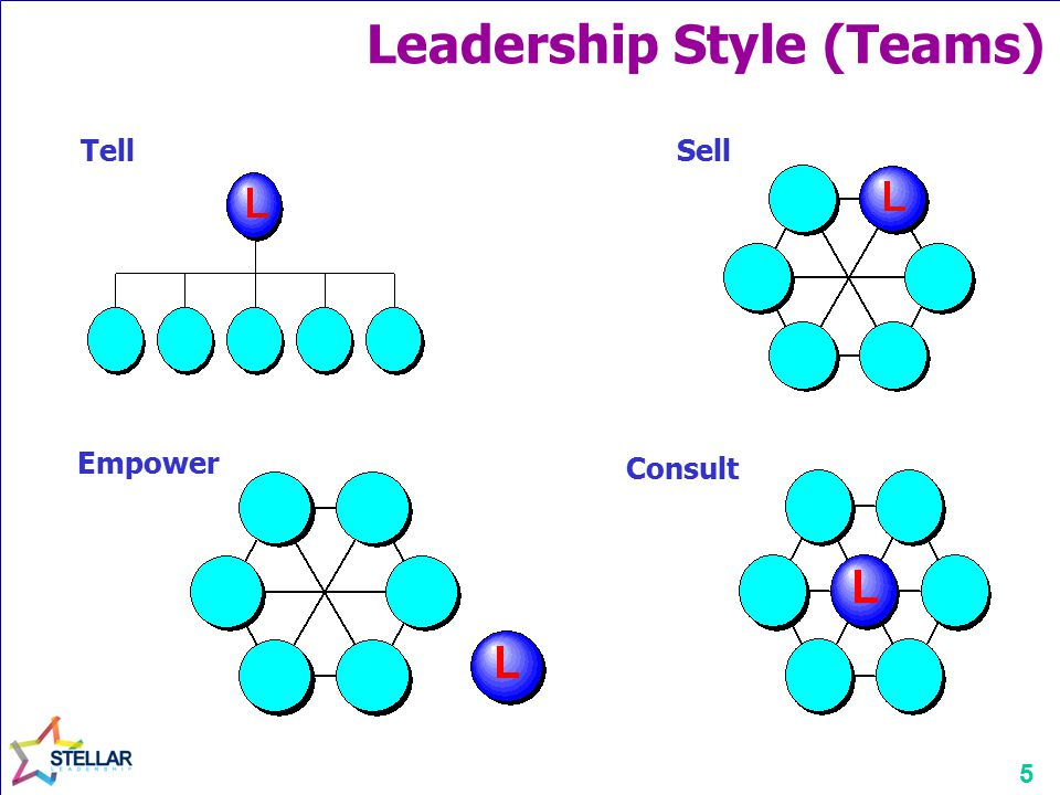 5 Consult Empower TellSell Leadership Style (Teams)