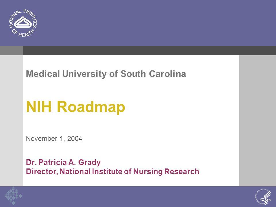 Medical University of South Carolina NIH Roadmap November 1, 2004 Dr. Patricia A. Grady Director, National Institute of Nursing Research