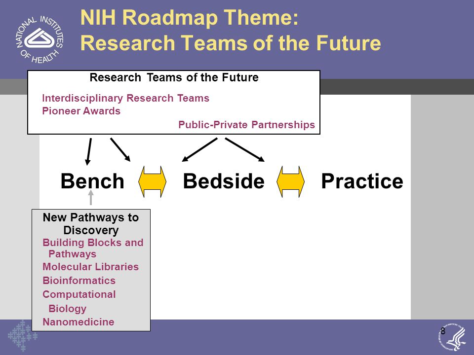 9 NIH Roadmap Theme: Re-engineering Clinical Research BedsidePracticeBench Re-Engineering the Clinical Research Enterprise New Pathways to Discovery Building Blocks and Pathways Molecular Libraries Bioinformatics Computational Biology Nanomedicine Research Teams of the Future Interdisciplinary Research Teams Pioneer Awards Public-Private Partnerships Integrated Research Networks Clinical Research Informatics NIH Clinical Research Associates Clinical outcomes Clinical Research Policy Training Translational Research Initiatives