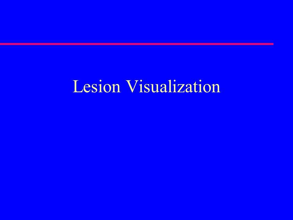 Lesion Visualization