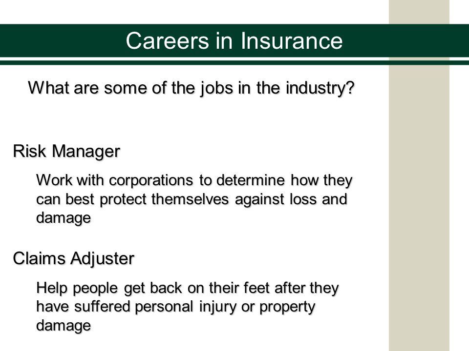 Careers in Insurance What are some of the jobs in the industry.