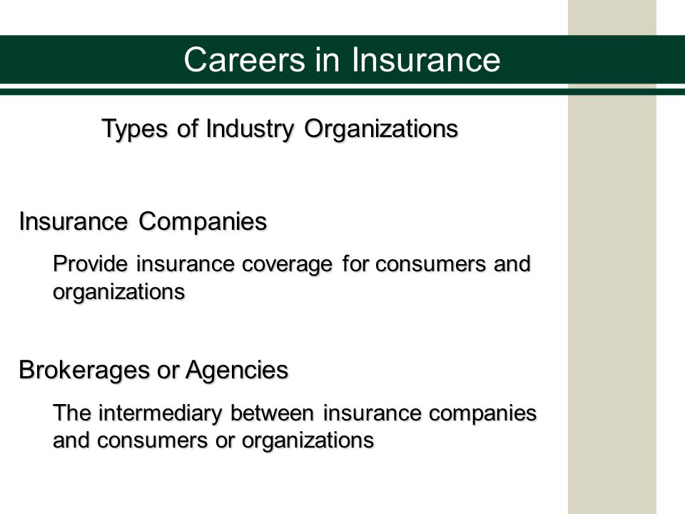 Careers in Insurance Types of Industry Organizations Reinsurance Companies Insurance services for insurance companies to help spread risk and provide financial stability for the insurance industry Consulting Organizations Professional advice from identifying risks to assessing losses or damages.