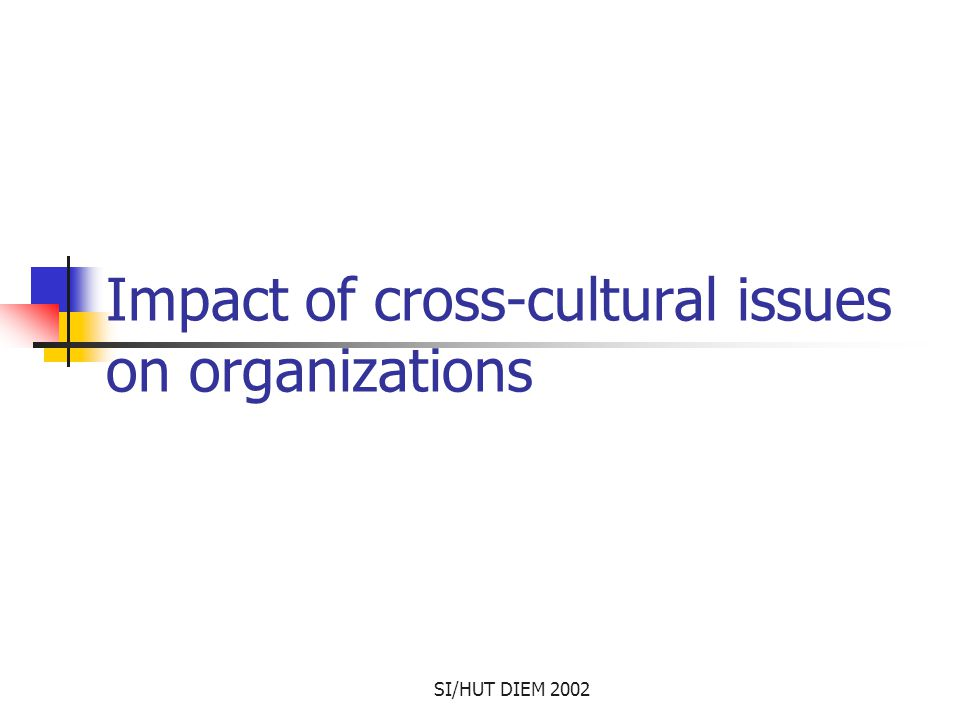 SI/HUT DIEM 2002 Impact of cross-cultural issues on organizations