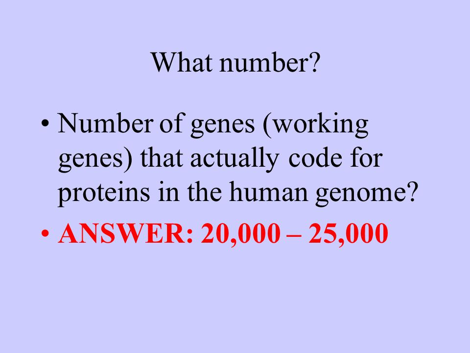 What number? Number of genes (working genes) that actually code for proteins in the human genome? ANSWER: 20,000 – 25,000