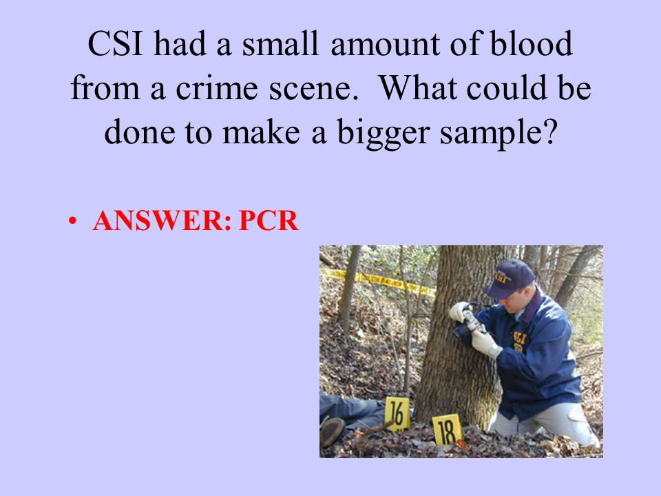 CSI had a small amount of blood from a crime scene.