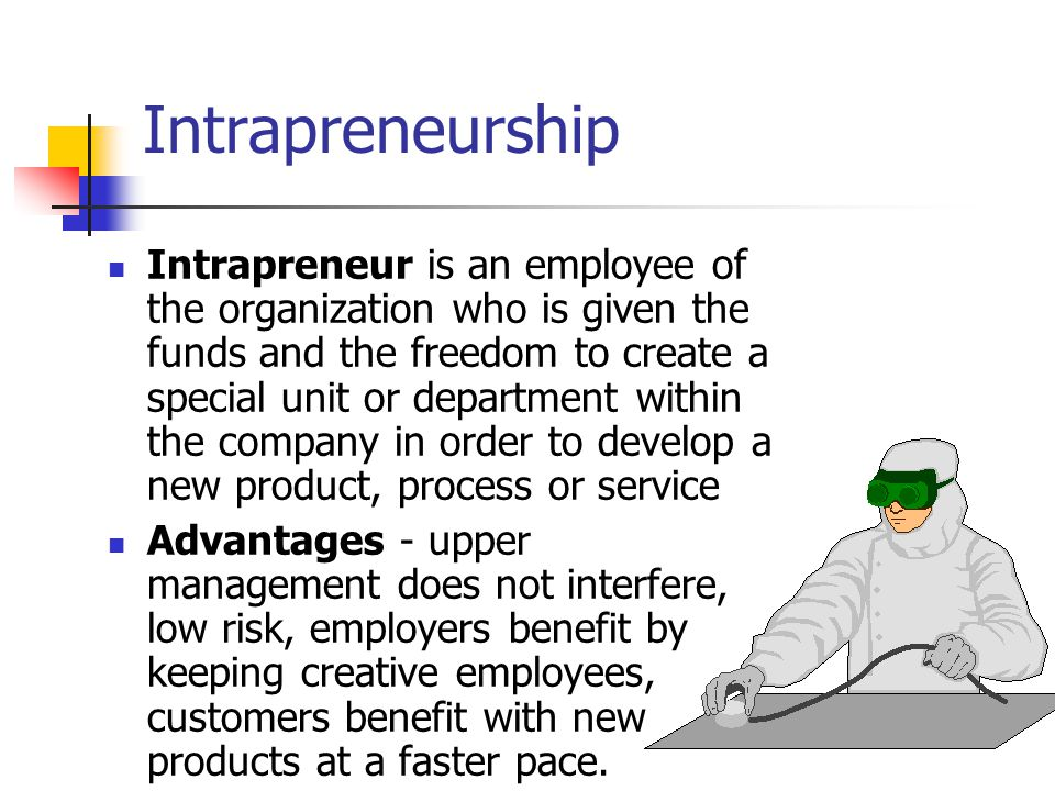 Intrapreneurship Intrapreneur is an employee of the organization who is given the funds and the freedom to create a special unit or department within