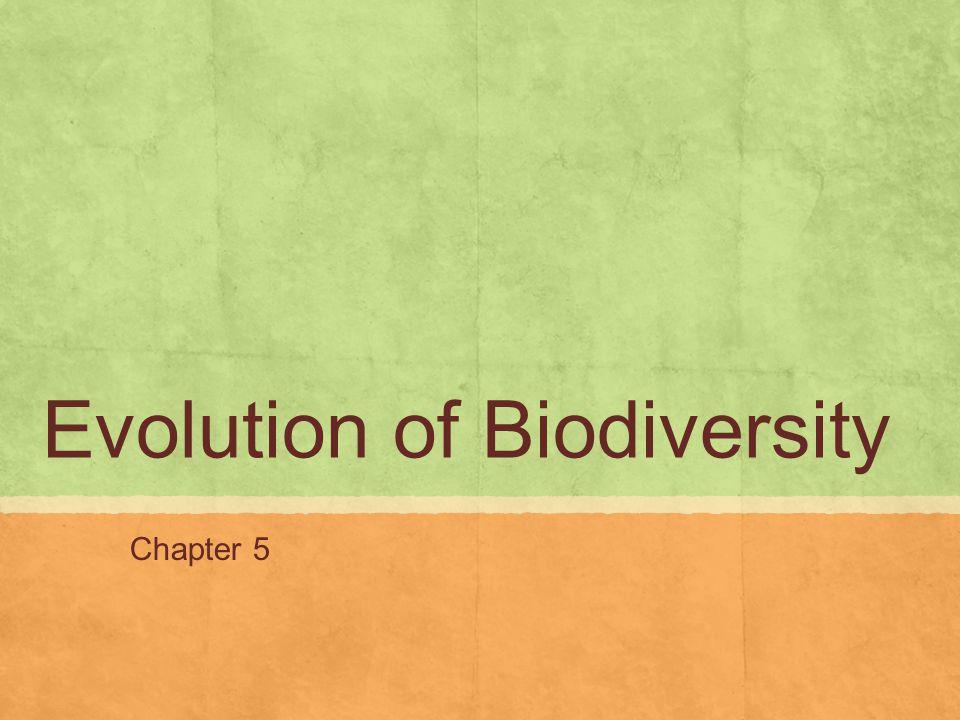 Evolution of Biodiversity Chapter 5