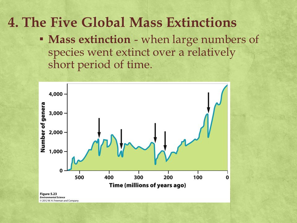 4. The Five Global Mass Extinctions ▪ Mass extinction - when large numbers of species went extinct over a relatively short period of time.