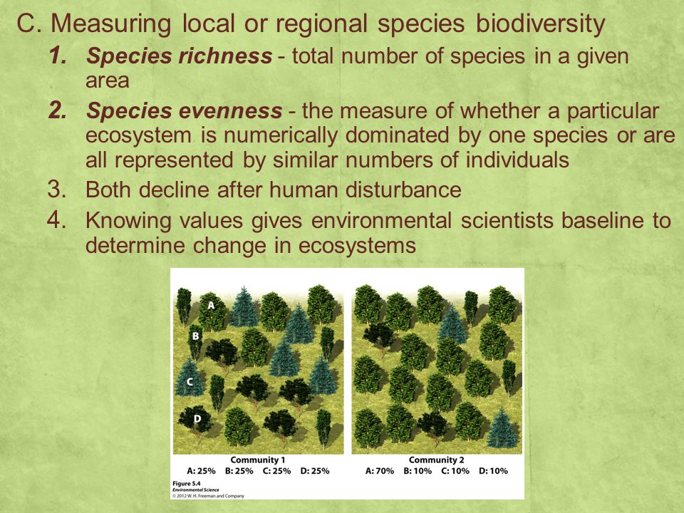 C. Measuring local or regional species biodiversity 1. Species richness - total number of species in a given area 2. Species evenness - the measure of