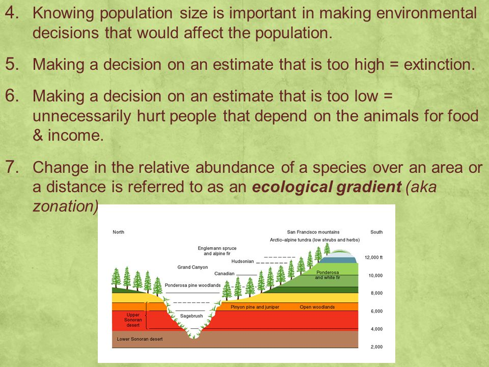 4. Knowing population size is important in making environmental decisions that would affect the population. 5. Making a decision on an estimate that i