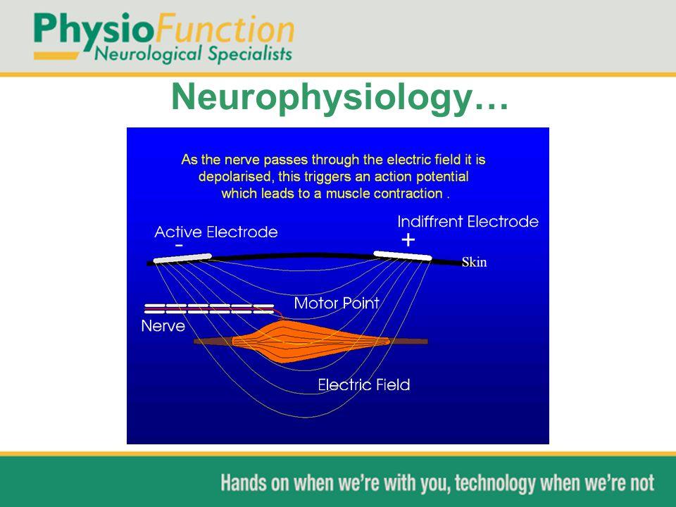 Neurophysiology…