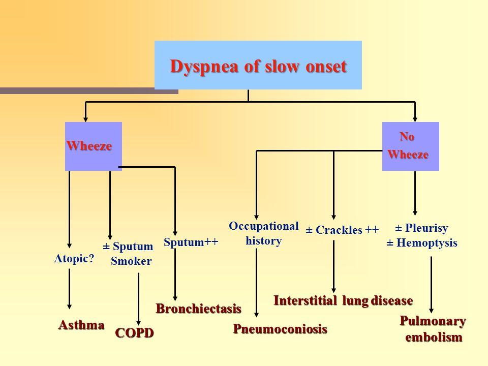 Dyspnea of slow onset Wheeze Wheeze No Atopic.