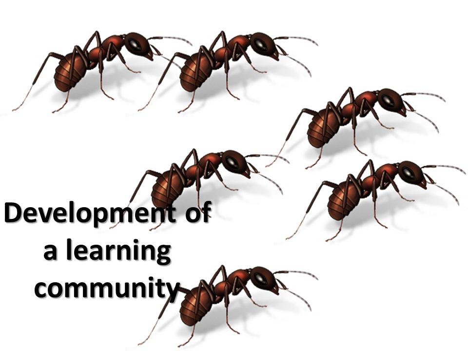 Development of a learning community