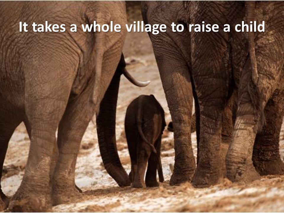 It takes a whole village to raise a child