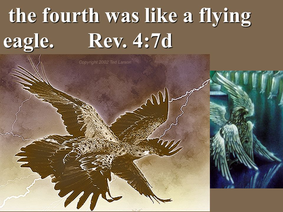 the fourth was like a flying eagle. Rev. 4:7d the fourth was like a flying eagle. Rev. 4:7d