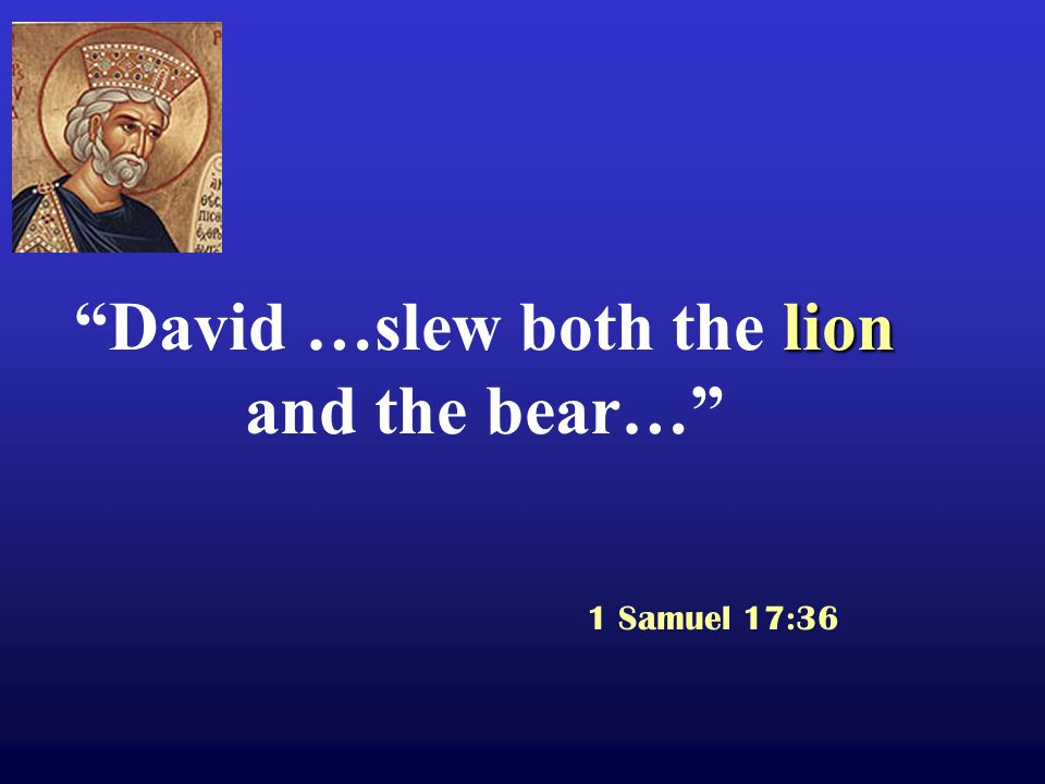 lion David …slew both the lion and the bear… 1 Samuel 17:36