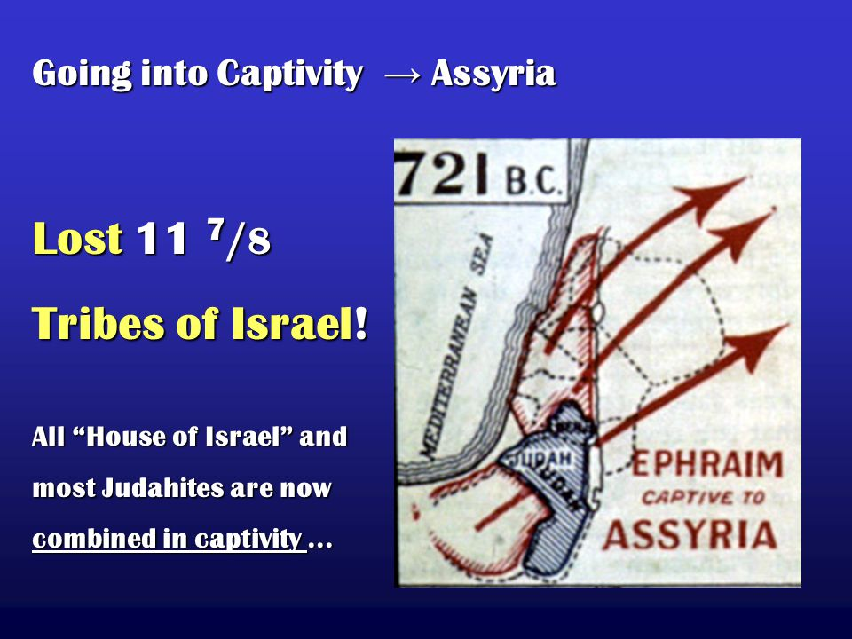 Lost 11 7 / 8 Tribes of Israel.