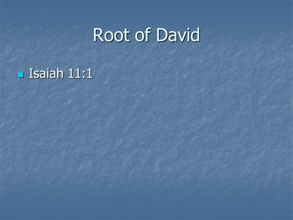 Root of David Isaiah 11:1 Isaiah 11:1