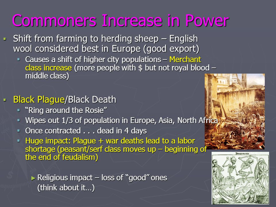Commoners Increase in Power  Shift from farming to herding sheep – English wool considered best in Europe (good export)  Causes a shift of higher ci