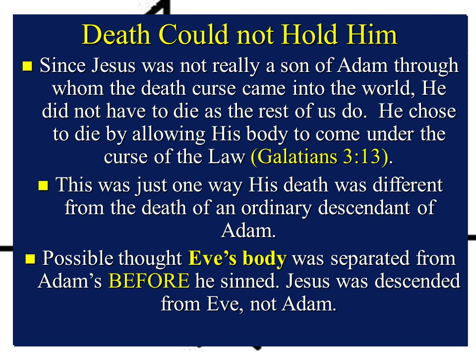 Death Could not Hold Him n Since Jesus was not really a son of Adam through whom the death curse came into the world, He did not have to die as the rest of us do.