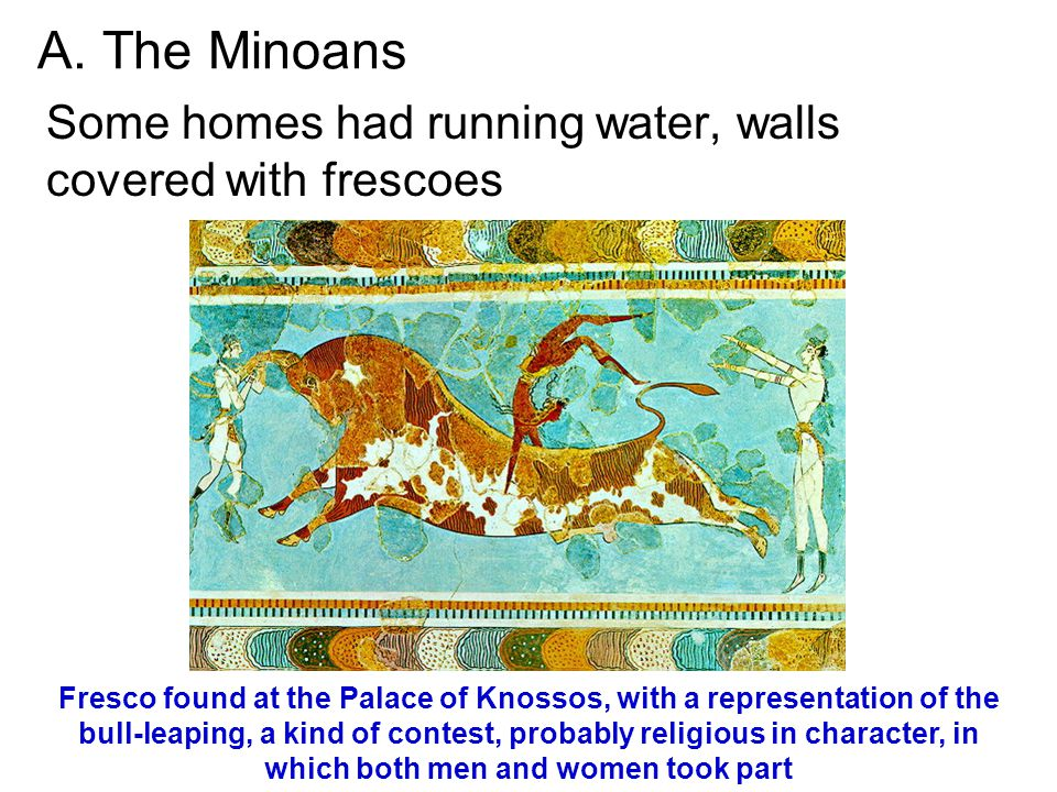 A. The Minoans Some homes had running water, walls covered with frescoes Fresco found at the Palace of Knossos, with a representation of the bull-leap