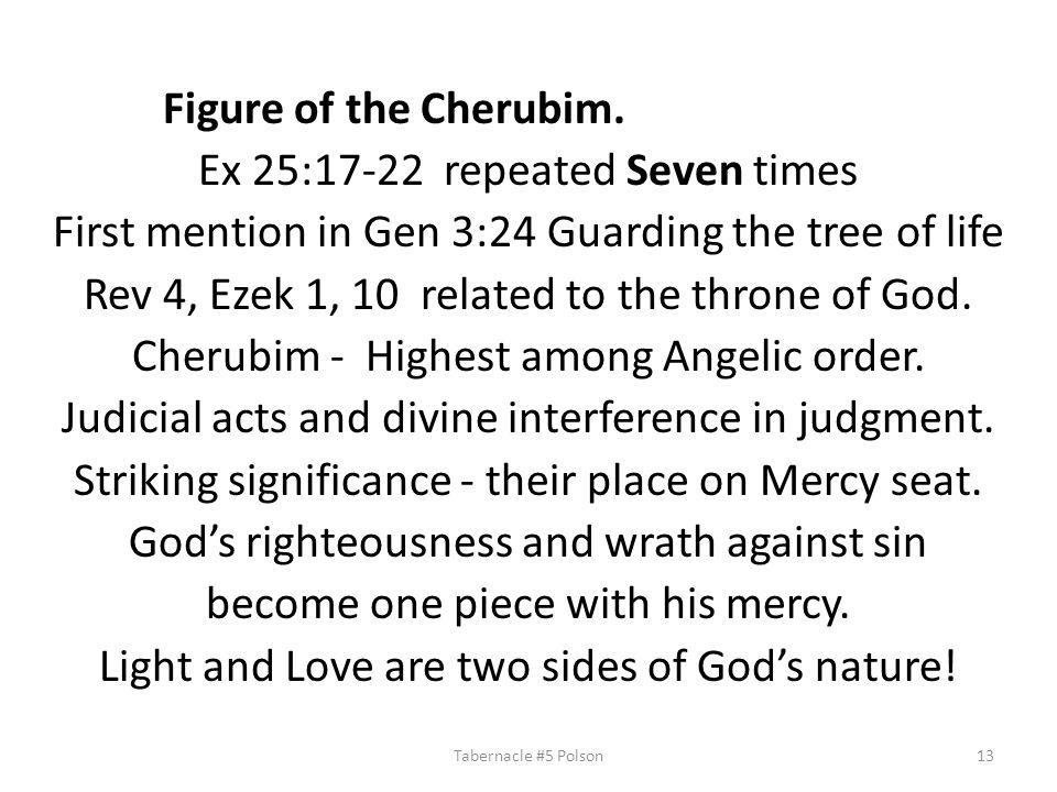 Figure of the Cherubim.