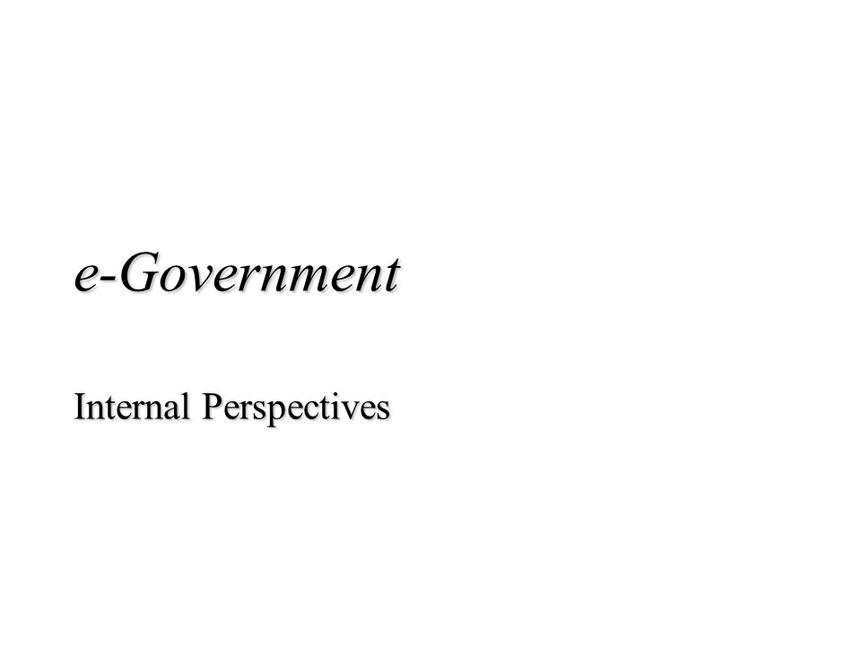 e-Government Internal Perspectives