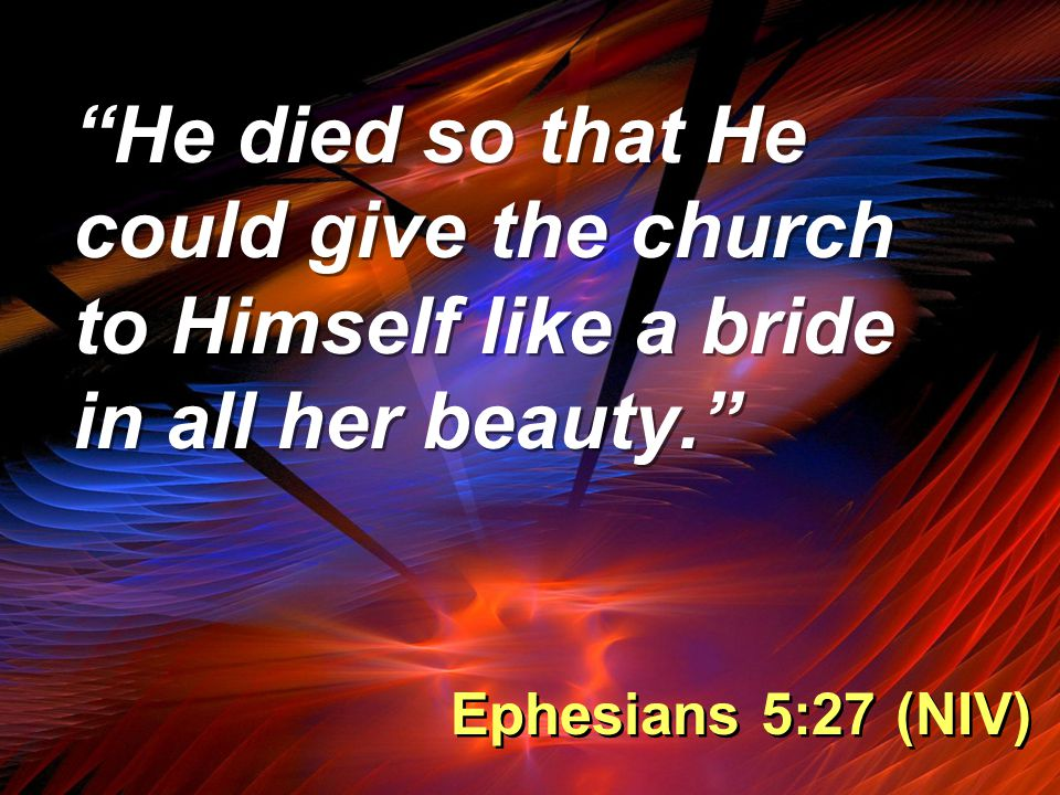 """""""He died so that He could give the church to Himself like a bride in all her beauty."""" Ephesians 5:27 (NIV)"""