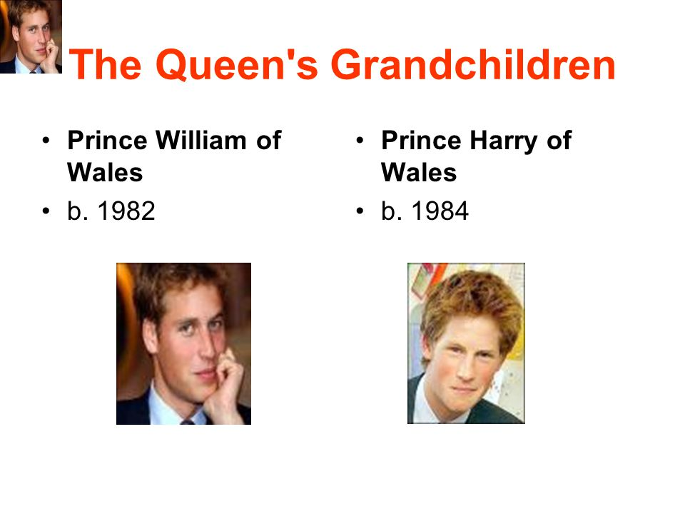 The Queen's Grandchildren Prince William of Wales b. 1982 Prince Harry of Wales b. 1984