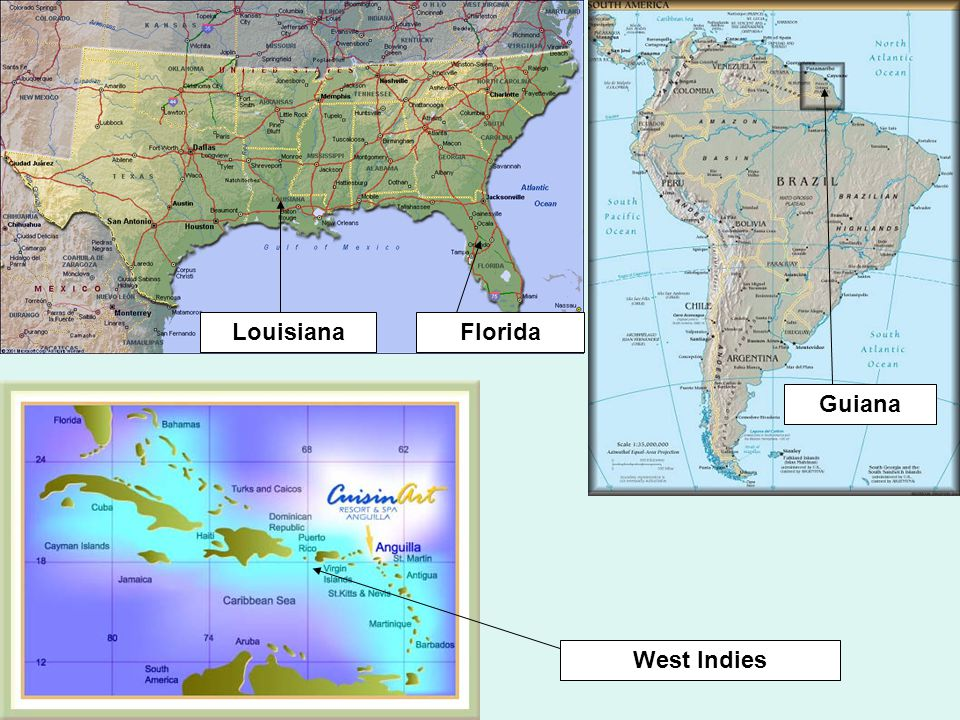 Napoleon felt that the key to the area was the French colony of Saint Domingue on the island of Hispaniola