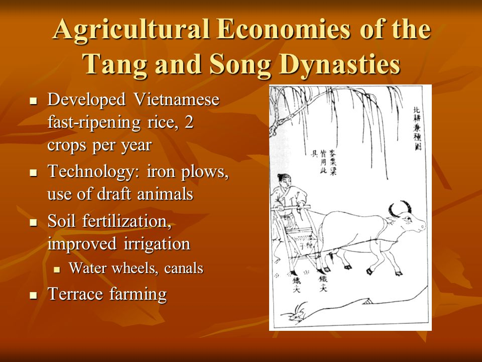 Agricultural Economies of the Tang and Song Dynasties Developed Vietnamese fast-ripening rice, 2 crops per year Developed Vietnamese fast-ripening rice, 2 crops per year Technology: iron plows, use of draft animals Technology: iron plows, use of draft animals Soil fertilization, improved irrigation Soil fertilization, improved irrigation Water wheels, canals Water wheels, canals Terrace farming Terrace farming