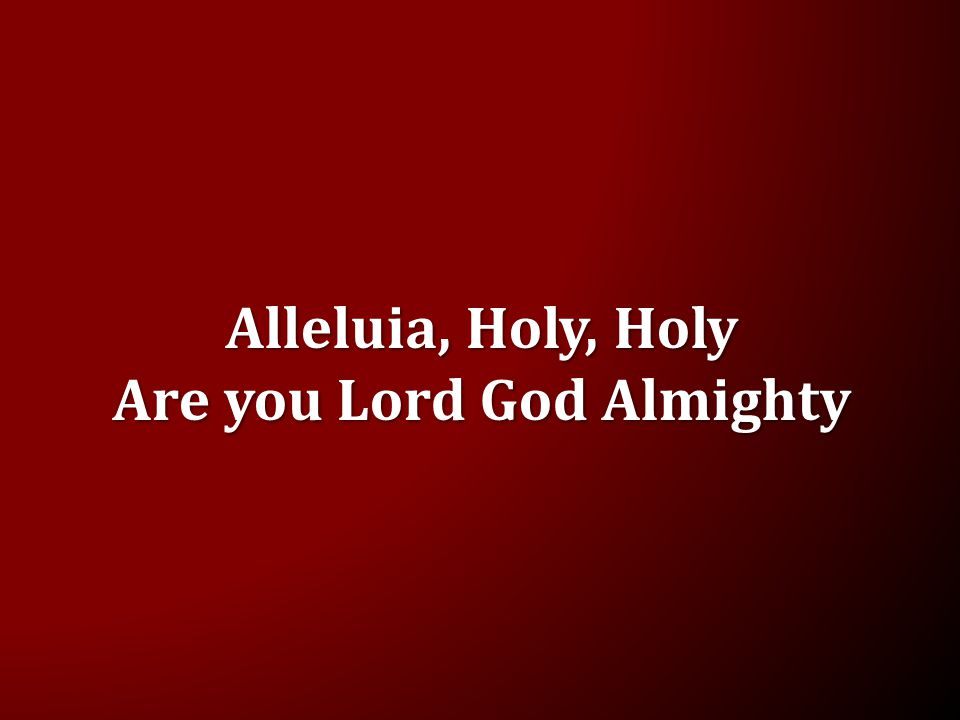 Alleluia, Holy, Holy Are you Lord God Almighty