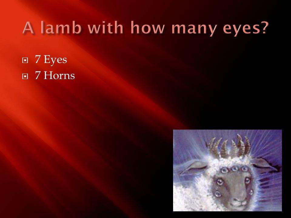  7 Eyes  7 Horns