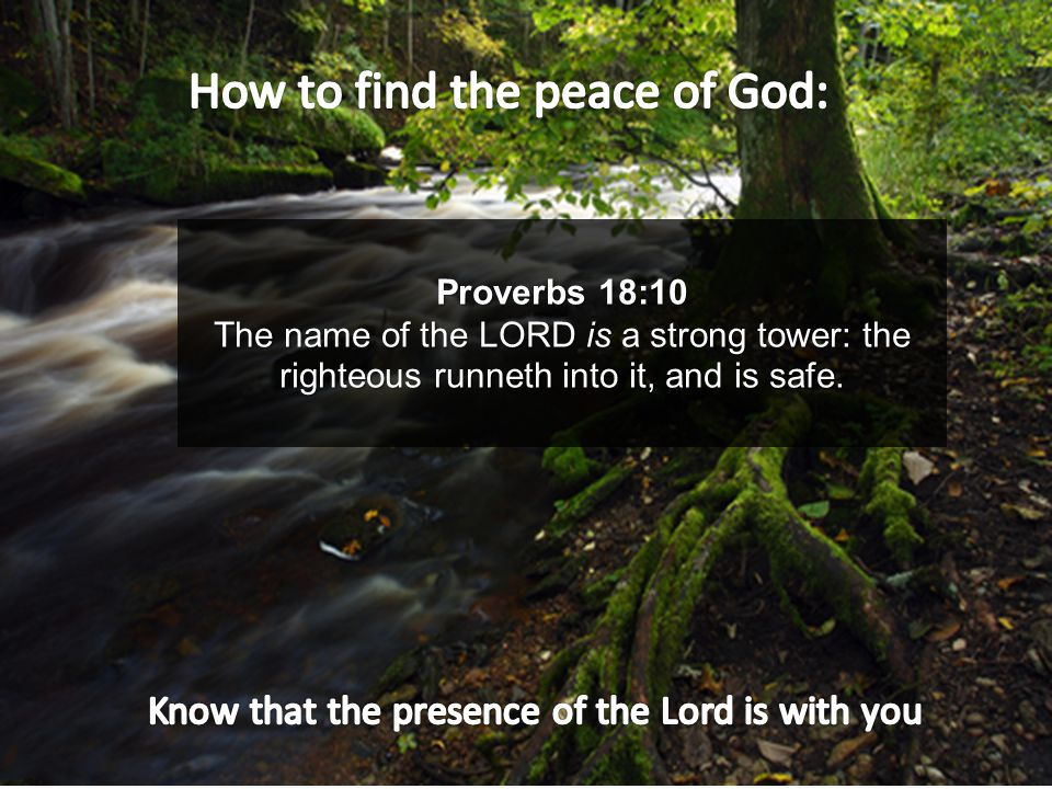 Proverbs 18:10 The name of the LORD is a strong tower: the righteous runneth into it, and is safe.
