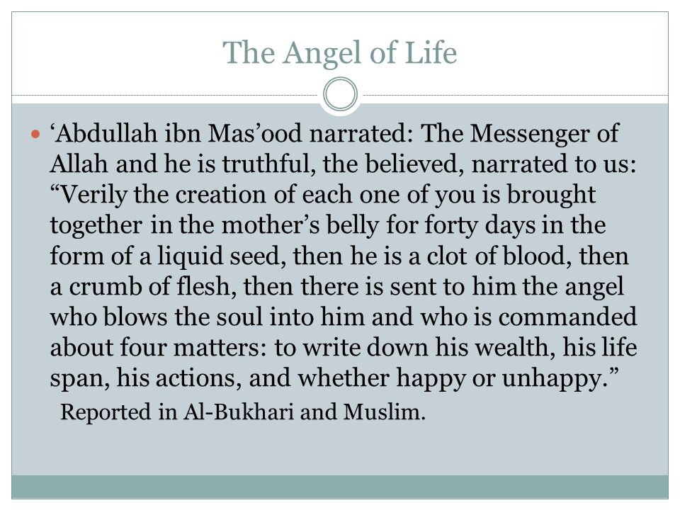 The Angel of Life 'Abdullah ibn Mas'ood narrated: The Messenger of Allah and he is truthful, the believed, narrated to us: Verily the creation of each one of you is brought together in the mother's belly for forty days in the form of a liquid seed, then he is a clot of blood, then a crumb of flesh, then there is sent to him the angel who blows the soul into him and who is commanded about four matters: to write down his wealth, his life span, his actions, and whether happy or unhappy. Reported in Al-Bukhari and Muslim.