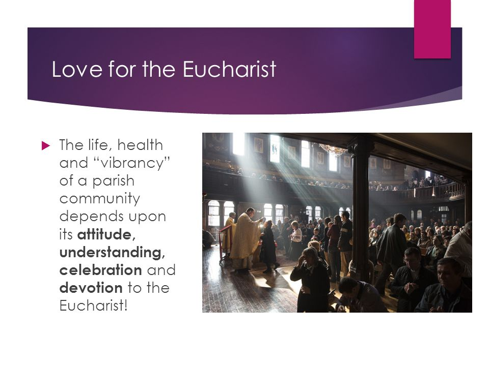 "Love for the Eucharist  The life, health and ""vibrancy"" of a parish community depends upon its attitude, understanding, celebration and devotion to t"