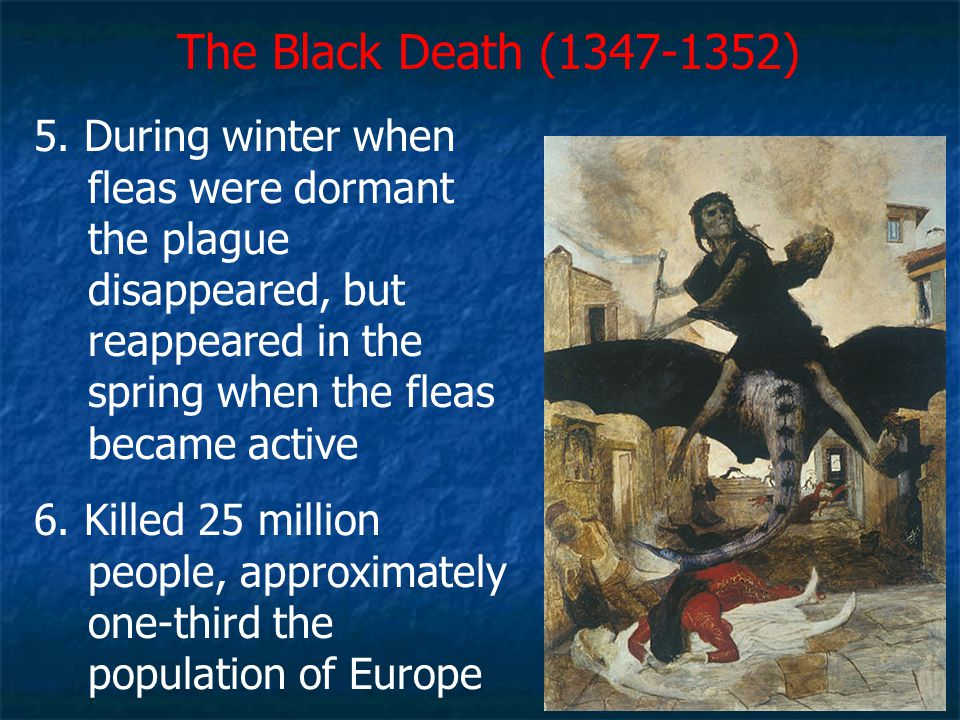 The Black Death (1347-1352) 5. During winter when fleas were dormant the plague disappeared, but reappeared in the spring when the fleas became active