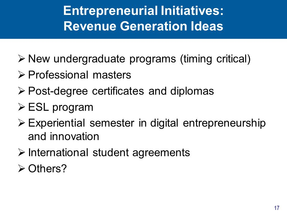 Entrepreneurial Initiatives: Revenue Generation Ideas  New undergraduate programs (timing critical)  Professional masters  Post-degree certificates