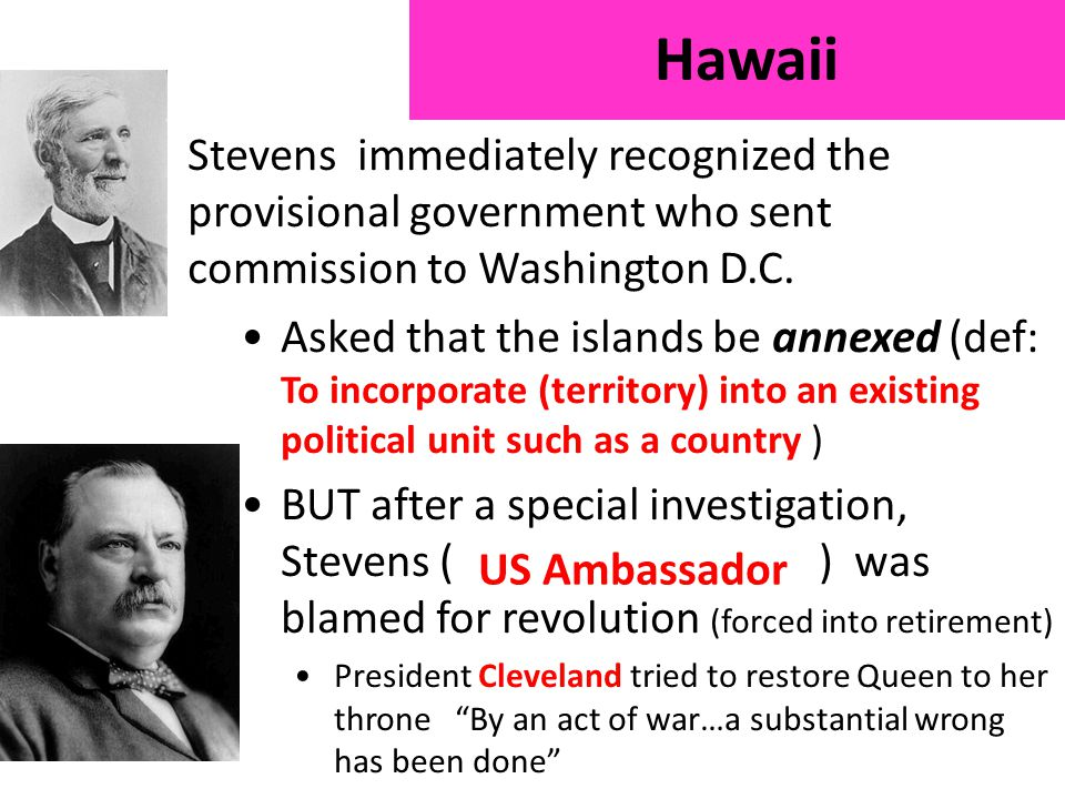 Stevens immediately recognized the provisional government who sent commission to Washington D.C.