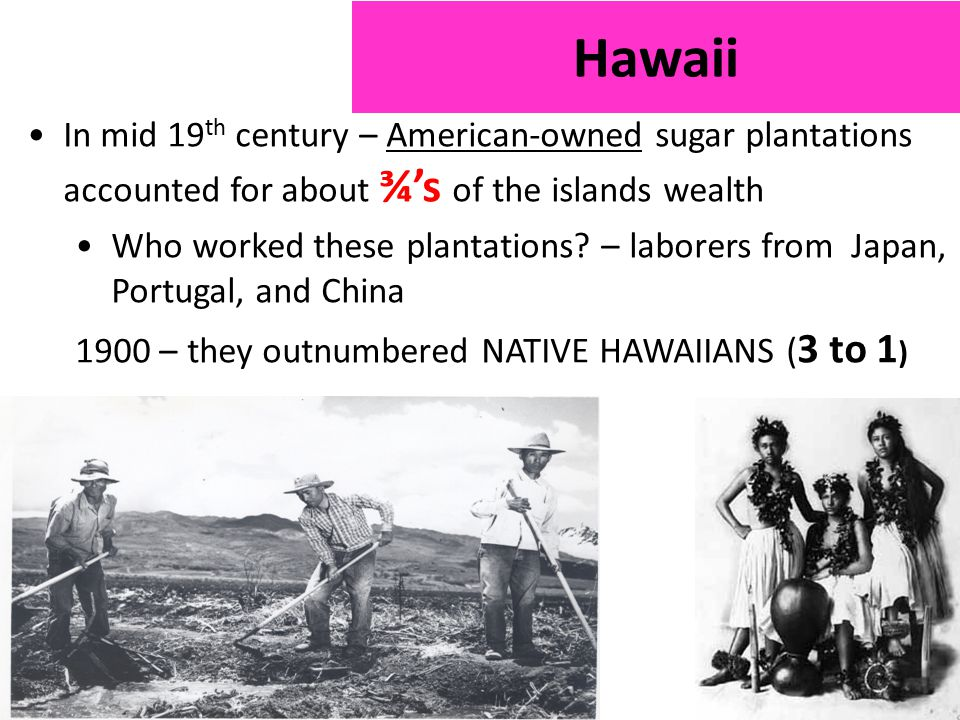 In mid 19 th century – American-owned sugar plantations accounted for about ¾'s of the islands wealth Who worked these plantations.