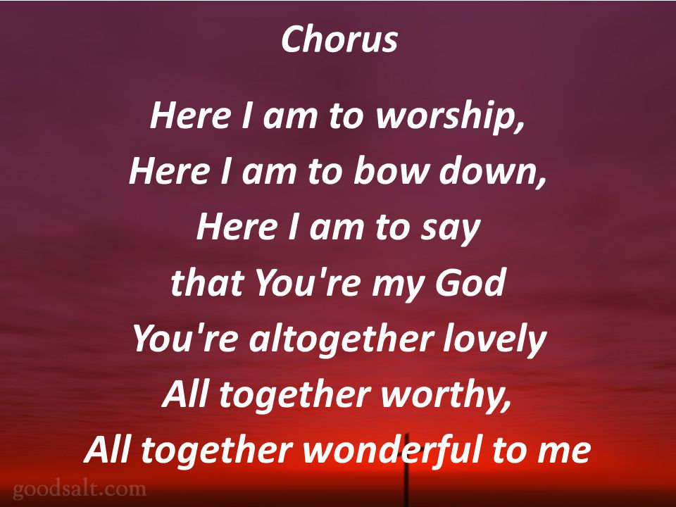 Chorus Here I am to worship, Here I am to bow down, Here I am to say that You re my God You re altogether lovely All together worthy, All together wonderful to me