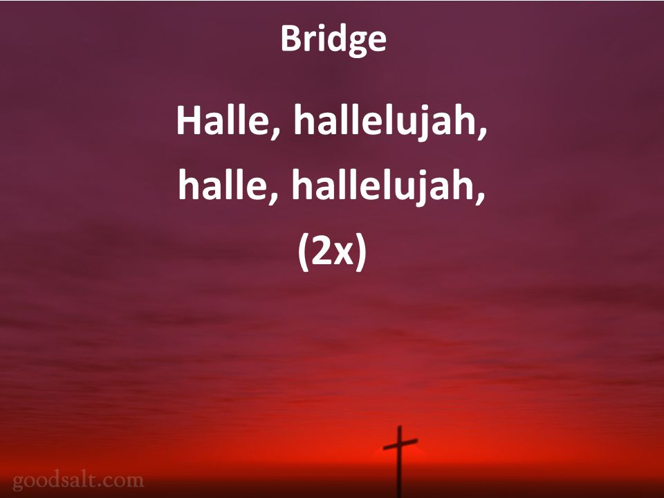 Bridge Halle, hallelujah, halle, hallelujah, (2x)