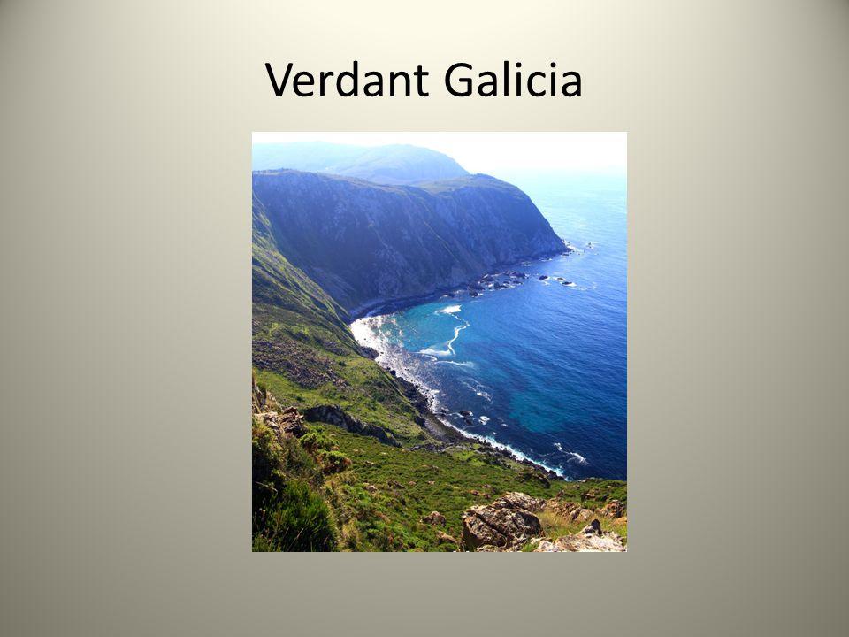 Verdant Galicia