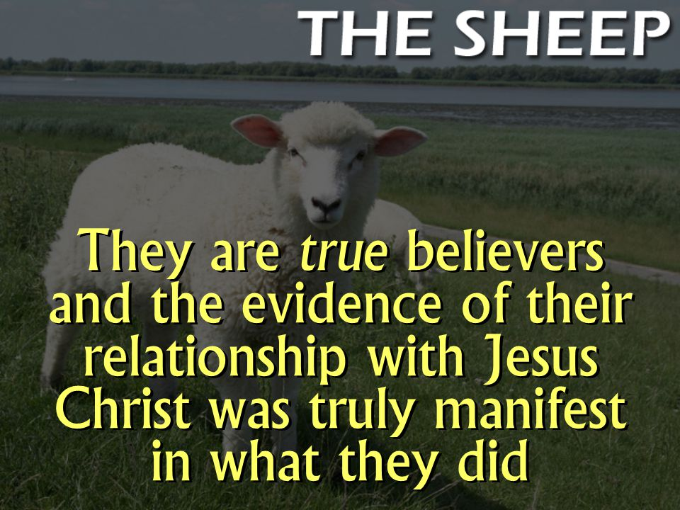 They are true believers and the evidence of their relationship with Jesus Christ was truly manifest in what they did